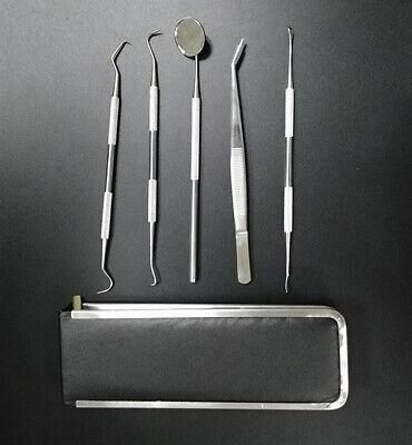 Dental Set Kit 5pcs Scaler Pick Tools Deep Cleaning Professional Oral Hygeine
