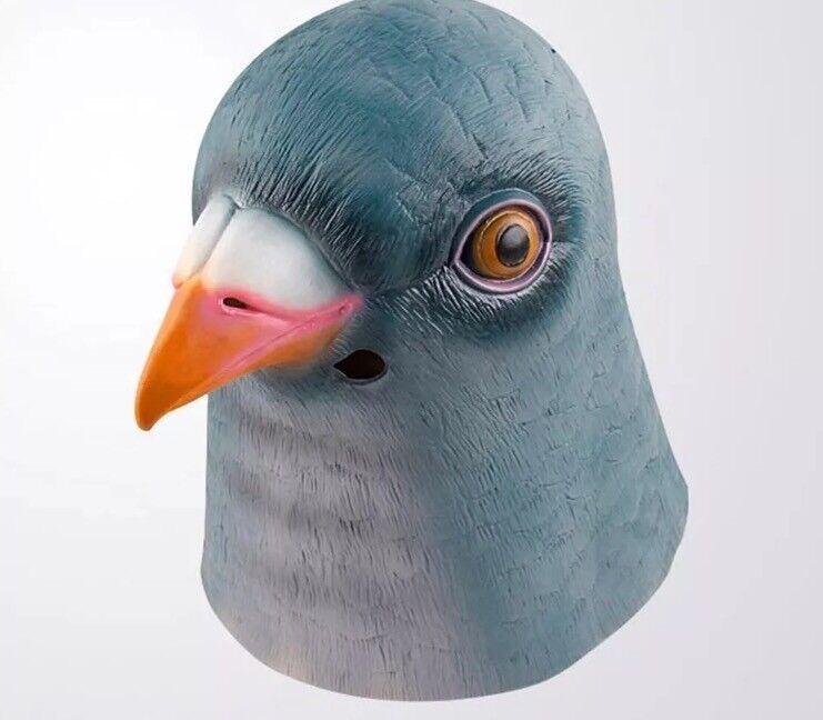 Fancy dress mask pigeon bird animal latex
