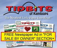 Free Newspaper Ads - In For Sale By Owner section
