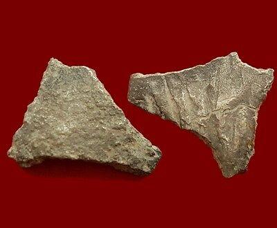 Meadows Premoneda silver - 12,9 gr