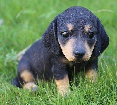 (Sitting DACHSHUND Puppy Dog - Life Like Figurine Statue Home / Garden NEW)