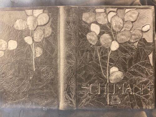 RARE ART NOUVEAU BINDING PHOTOS  A group of five original platinum prints