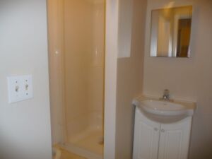 BEAUTIFUL BACHELOR APARTMENT AVAILABLE IN HAMILTON