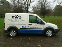 Tayside Paw Prints - Pet Care Services (Dog walker)