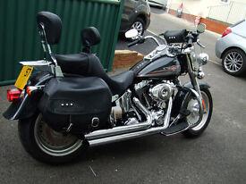 Harley Davidson Fat Boy - 2007 57 plate - 2008 Model - 11011 miles - many extras