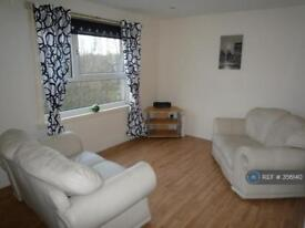 1 bedroom flat in Ann St, Hamilton, ML3 (1 bed)