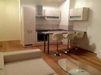 Modern furnished and recent refurbished one bedroom flat to let