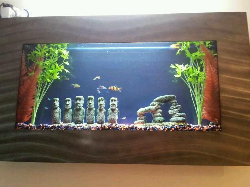 Wall mounted fish aquarium in chandlers ford hampshire for Wall mounted fish tanks