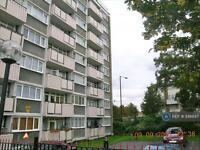 1 bedroom flat in Canning Town, London, E16 (1 bed)