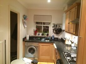 Canning Town , Living the Life in Central London! Beautiful Double Room just for you !! :)