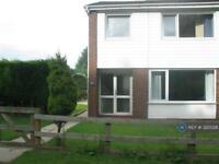 3 bedroom house in Back Lane, Chorley, PR6 (3 bed)