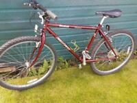 Medium Sized Mountain Bike.