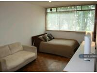 Studio flat in Haverstock Hill, London, NW3