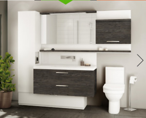Modern vanity and sink from The Plumbing Center (retail $3000)