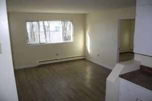 Two Bedroom Apartment on Belvedere Avenue