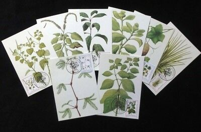 ST THOMAS 1983 Medicine Plants SET 1st Day Used on Maxi Cards (8 Items) [D360]