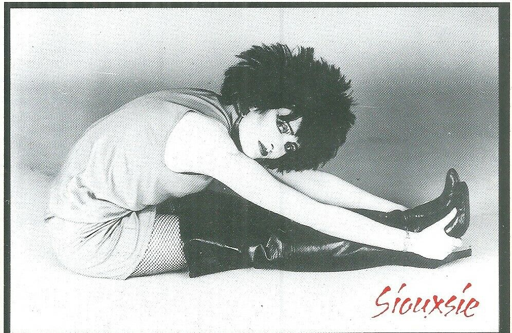 Siouxsie & the Banshess - Rare Siouxsie Image Original 1980's Sticker - Mint