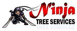 Ninja Tree Services Lambton Newcastle Area Preview