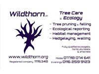 Wildthorn ~ Tree Care & Ecology