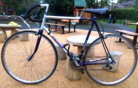 Raleigh Shimano SIS in Silver/Purple 23 (Large) inches frame 2x6=12 Gears