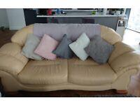 Free 2 & 3 seater sofas