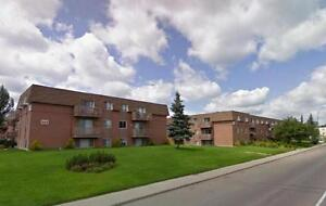 Borden Place Apartments - Rest of May Free - Great Monthly...