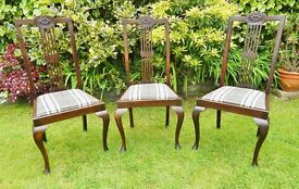 3 early 20th century dining chairs