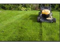 Gardening / Landscaping / Decking