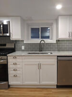 NEWLY RENOVATED BASEMENT APARTMENT IN LITTLE ITALY