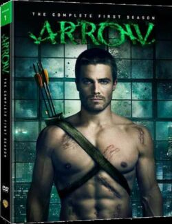 Arrow season 1 dvd Aberglasslyn Maitland Area Preview