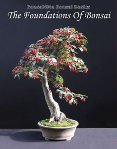 Bonsai Basics The Foundation Of Bonsai Book By Harry Harrington (English)