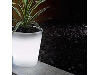 Solar LED plant pot