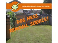 Kasaya Canine Services - *Now offering* - Professional Domestic Dog Mess Removal Service