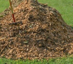 Mulch /wood chips