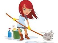 Domestic cleaner available for new clients in Exeter