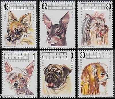Bulgaria 1991 SG 3784-3789  Mi 3929-34 MNH Dogs Animals Pets combined postage