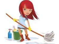 Experienced cleaner - available slots