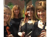 LooseStrings Quartet available for Weddings, drinks receptions etc