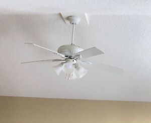 Ceiling fan / light