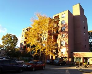 Spacious Apartments in DOWNTOWN London - January 1st!! London Ontario image 1