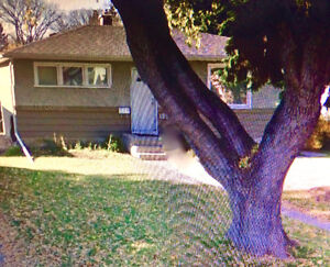 Close Walking Distance U of S, Includes Utilities Cable & Wi-fi