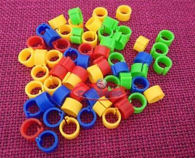 100 Bird Leg Bands 8mm Pigeon Chicken Parrot Bantam Poultry Rings 10 Colors New