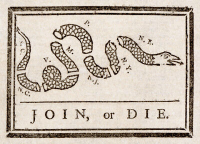 6707.Join or Die snake POSTER.Office Home room Decoration.Graphic art (Office Graphics Design)