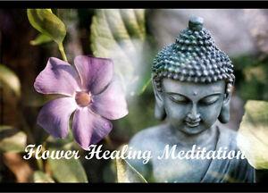 Flower Meditation and Healing Class Maitland Maitland Area Preview