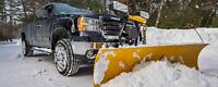 Snow plowing - 1 time fee $30 - driveway