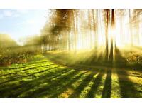 🎲 Pr DJIBRIL Master of Spiritual Healer in U.K . 100% Guaranteed & Quick Result