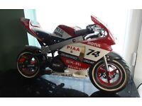 minimoto 50cc pocket bike