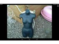 Female half body mannequin