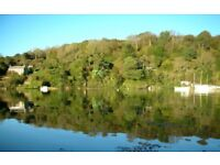 Ancient woodland and beautiful river views - stunning house for September - sleeps 6