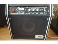 Badger minuet amp 1970s